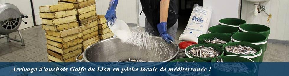Salage des anchois